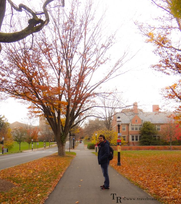 Travel Realizations, fall, autumn, Princeton campus