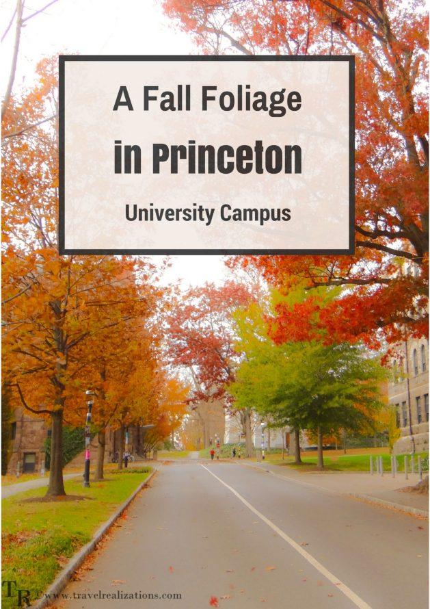Travel Realizations, PPrinceton university campus