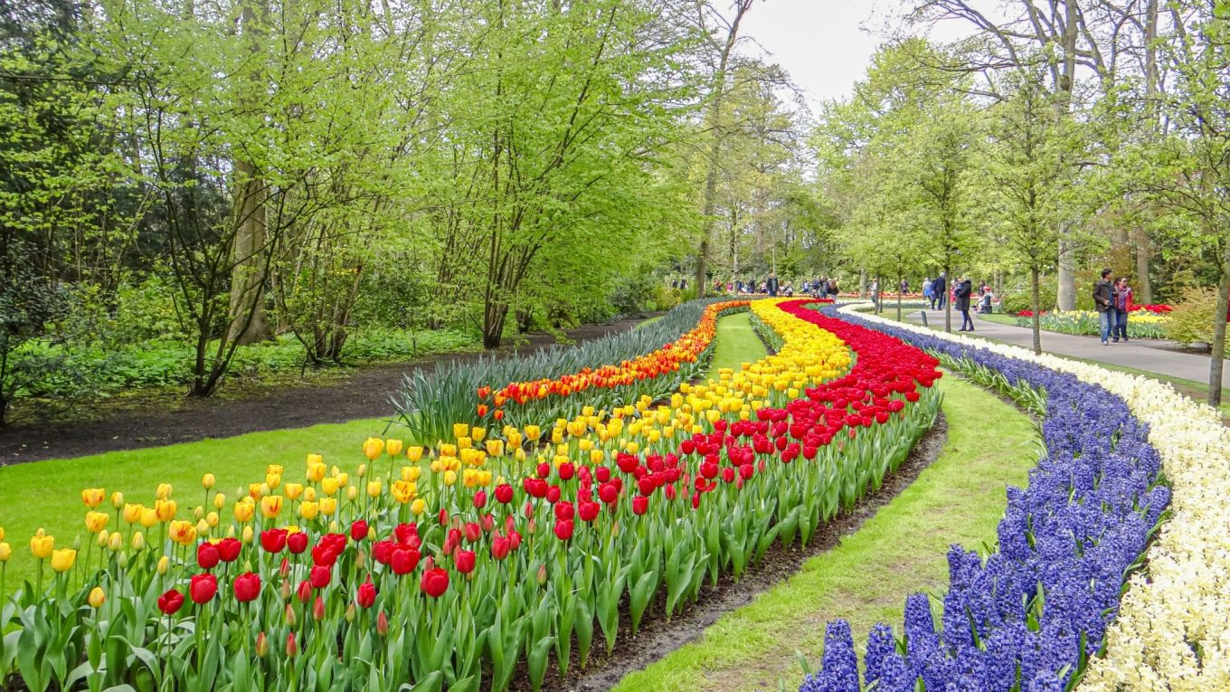 Keukenhof - World's largest flower garden in Lisse, Netherlands - A photo essay!