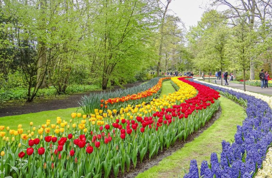 Keukenhof – World's largest flower garden in Lisse, Netherlands – A photo essay!
