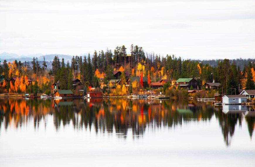 Fall foliage in Grand Lake, Colorado!