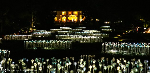 Stories in Light by Bruce Munro - Art that blooms at night, Travel Realizations, Silver Sea
