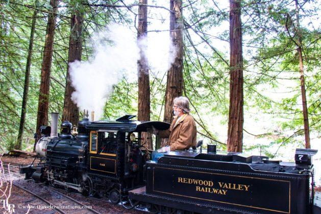 Beautiful steam train rides near San Francisco, Travel Realizations, Redwood Valley Railway , Tilden Regional Park