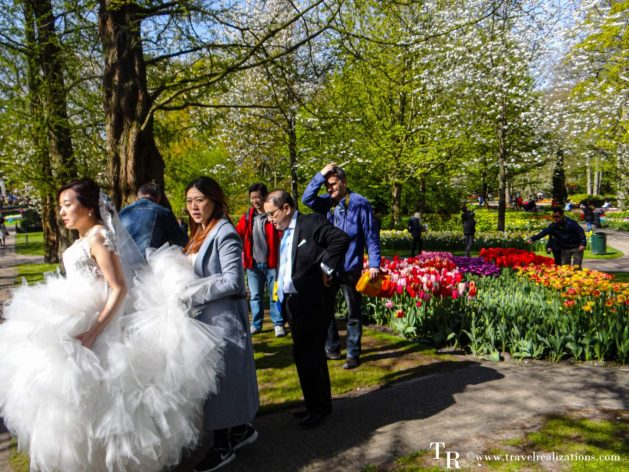 A fleeting witness of weddings, Travel Realizations, Keukenhof, Netherlands