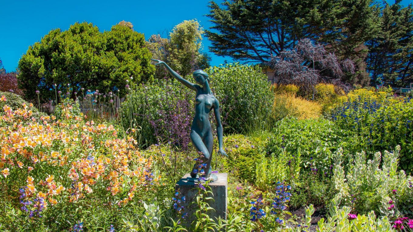Mendocino Coast Botanical Gardens - A Photo Essay!