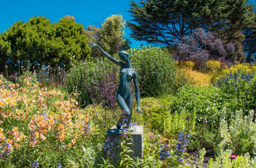 Mendocino Coast Botanical Gardens – A Photo Essay!
