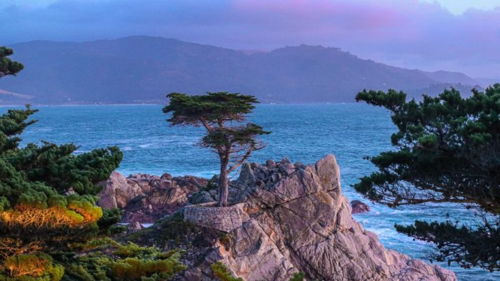 Easy Day Trips from San Francisco