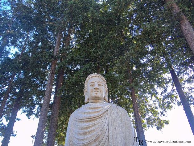 Easy Day Trips from San Francisco - A local's guide, Mount Madonna