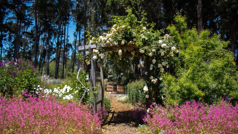 Spring break in California - Best places to visit