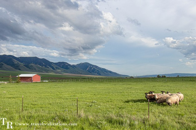 Salt Lake City to Yellowstone - A road trip guide, Travel Realizations, Wyoming