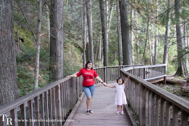 Glacier National Park - A travel guide, Travel Realizations, Trail of the Cedars Nature Trail