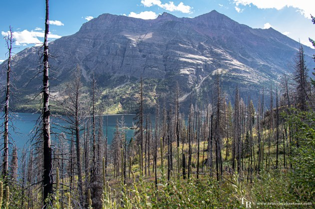 Glacier National Park - A travel guide, Travel Realizations, Evidence of 2015 Wildfire