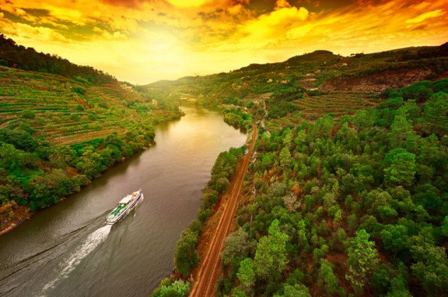 TR__Foodies_Portugal