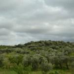 Gargano Peninsula