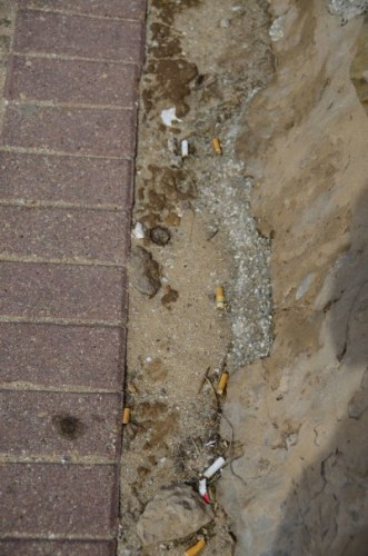 Mossel Bay litter greenest community?