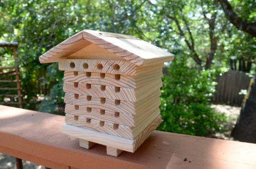 Mason Bee House image
