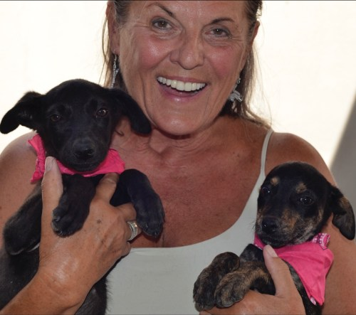 Cherrie and two rescue pups