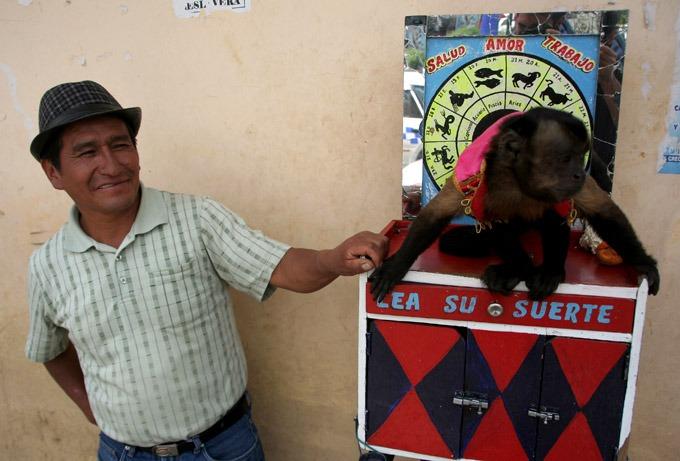 people huaraz monkey. Santa Cruz trek on a budget