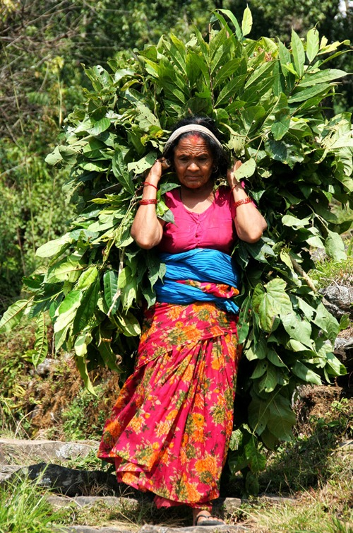 mejores cosas que hacer en pokhara