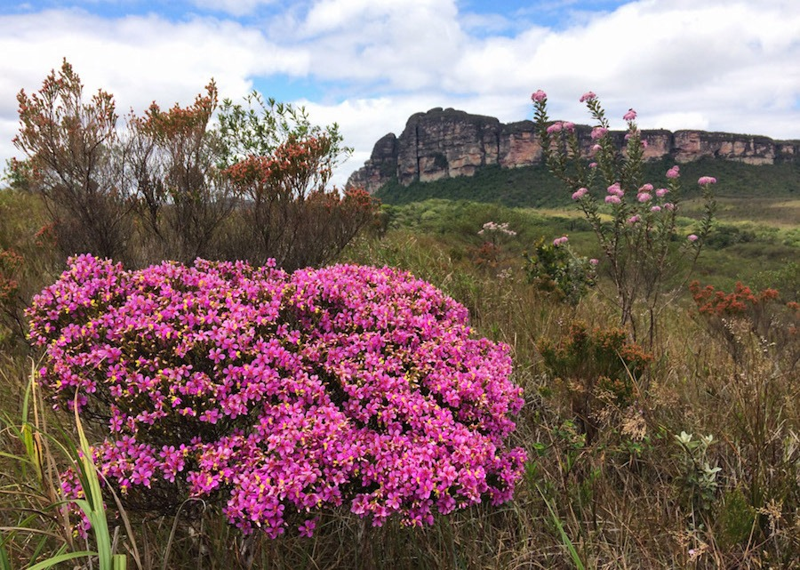 Vale do Pati Best hikes in chapada diamantina