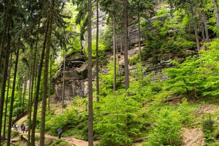 Hiking Trail Bohemian Switzerland National Park