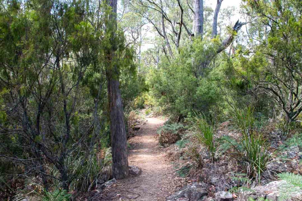 Alum Cliffs, Tasmania Walks