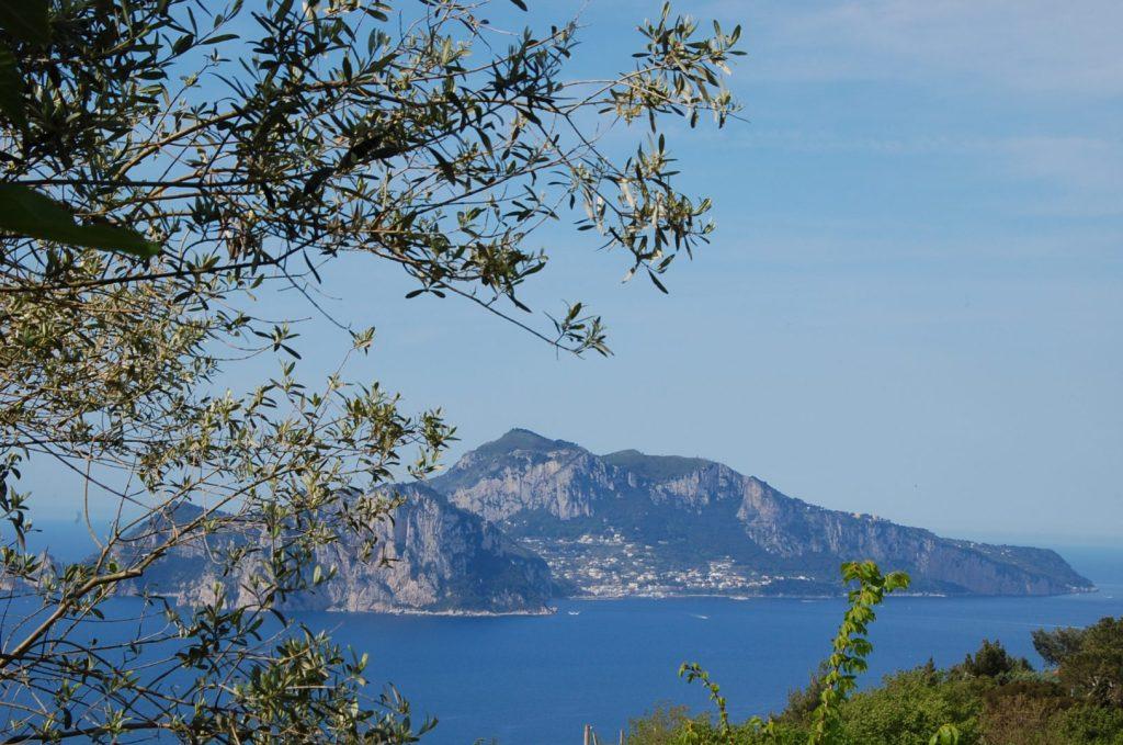 Uitzicht Capri | Amalfikust