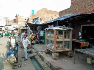 Straße Agra