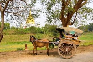 Pferdekutsche Inwa Mandalay