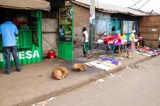 Armut Nairobi