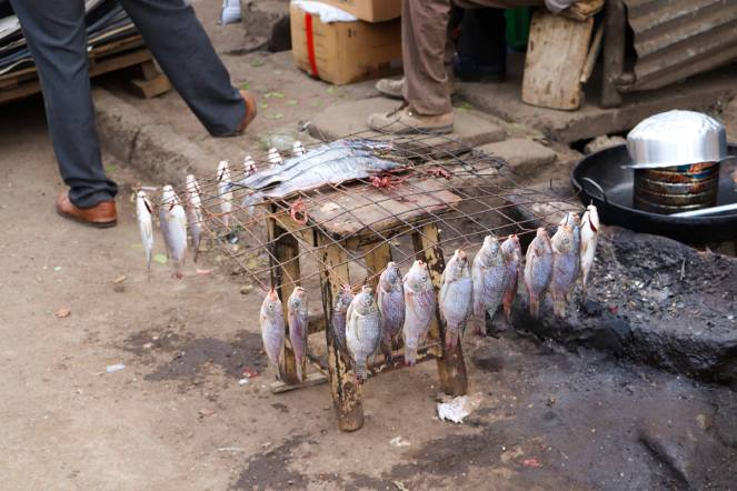 Fish Mathare