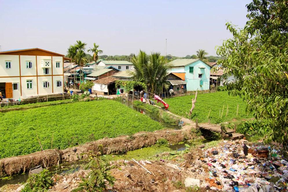 Feld Myanmar