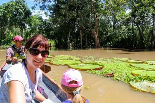 Amazonas-Riesenseerose in Peru