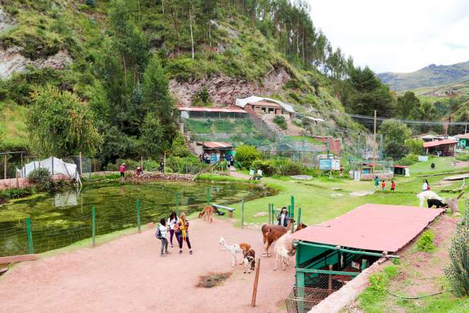 Ccochahuasi Animal Sanctuary in Peru