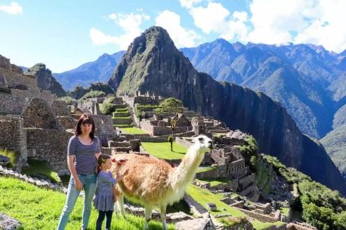 Lama am Machu Picchu