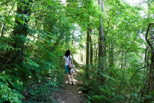 Wanderweg zum Aussichtspunkt in Eichstätt