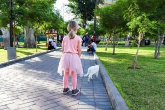 Im Parque de los Gatos Lima