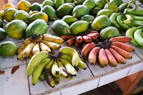 3 verschiedenen Bananen