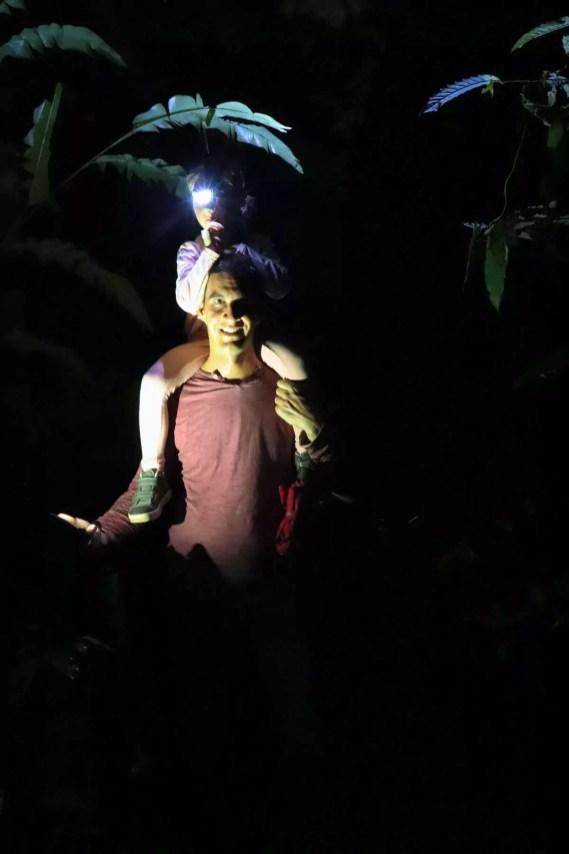 Tierbeobachtung in der Nacht im Regenwald