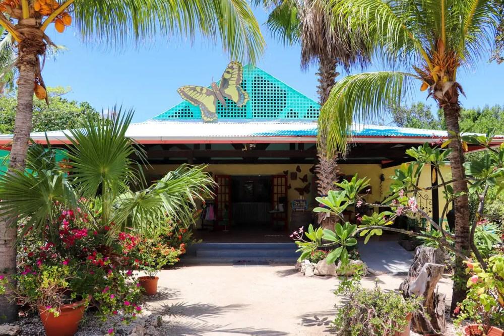 Butterfly Farm in Aruba