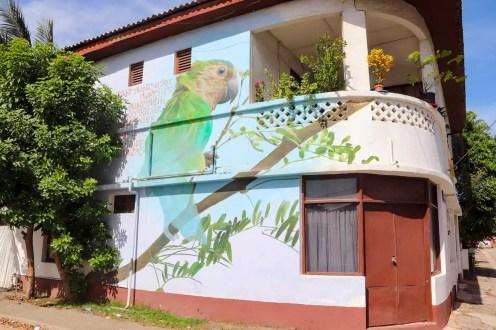 Garrick Marchen Street Art Aruba