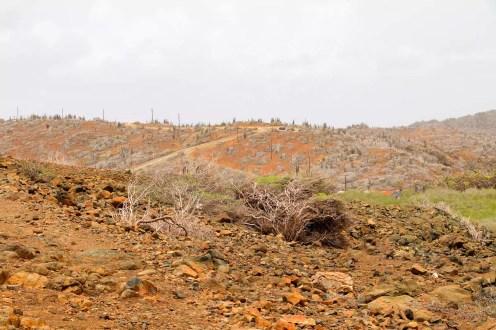 Landschaft Aruba