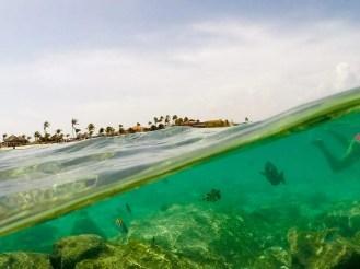 Mit Fische auf dem Arashi Beach schwimmen