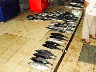 Auf dem Fischmarkt in Malé