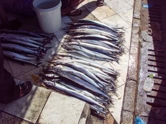 Fischmarkt in Malé, Malediven