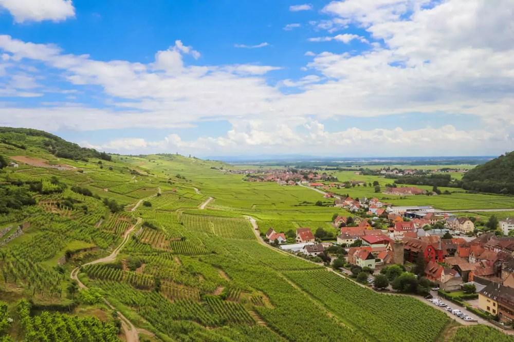 Weinfelder Kaysersberg