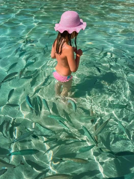 Fische am Strand Portinatx