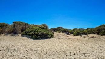 Sanddünen auf Platja des Cavallet