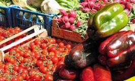South Devon's Farmers' Markets