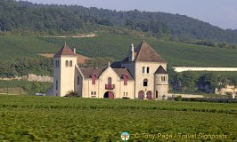 See Burgundy Vineyards on the Grands Crus Wine Route